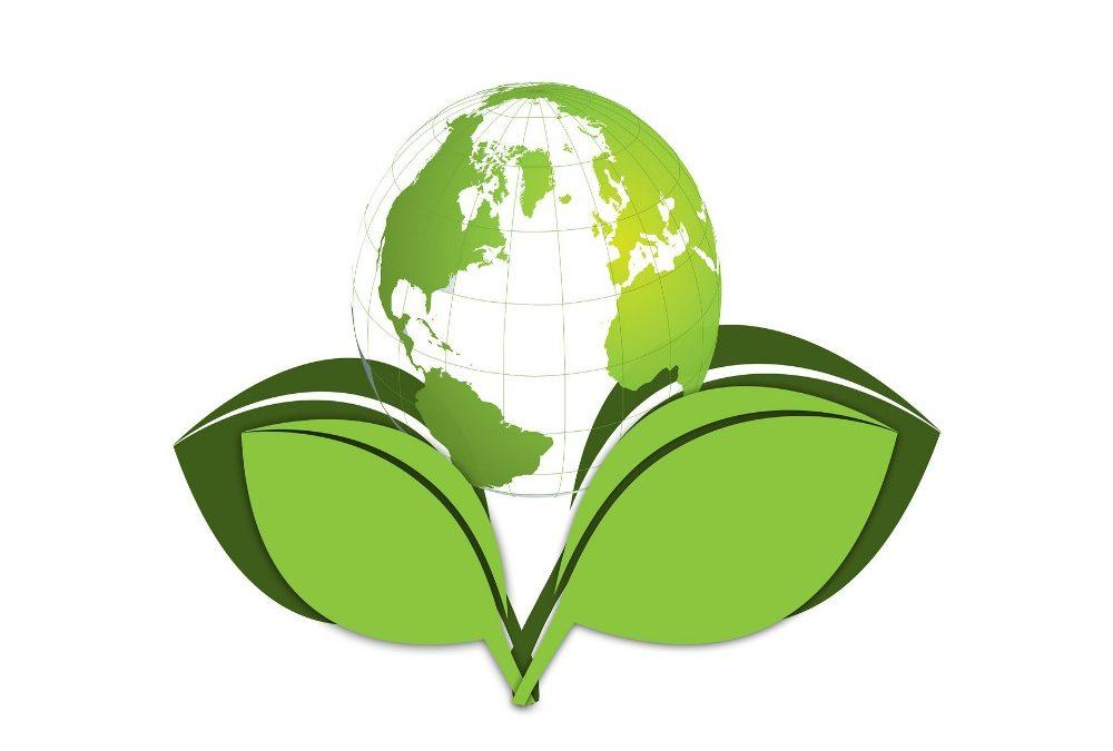 La percezione della sostenibilità in azienda.